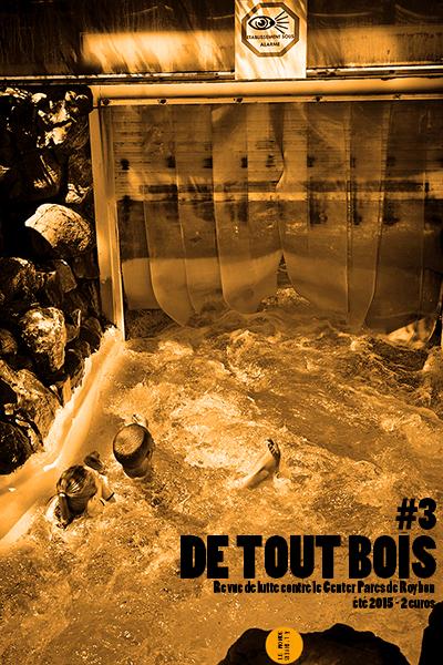 detoutbois3